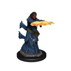 D&D Premium Painted Figures Human Wizard Female