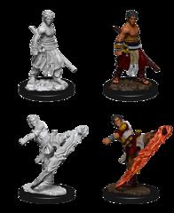 Nolzurs Marvelous Male Half-Elf Monk