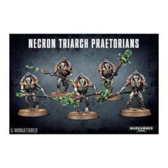 Necron Triarch Praetorians 49-07