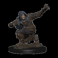 Pathfinder Battles Premium Painted Figure Human Rogue Male