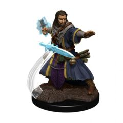 D&D Premium Painted Figures Human Wizard Male