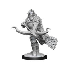 Nolzurs Firbolg Ranger Male