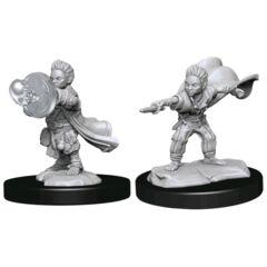 Pathfinder Deepcuts Unpainted Miniatures Halfling Wizard Male