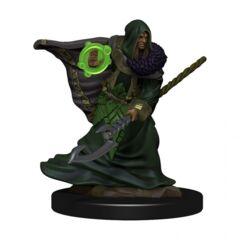D&D Premium Painted Figures Elf Druid Male