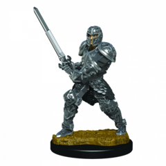 D&D Premium Painted Figures Male Human Fighter