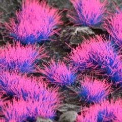 Gamer's Grass - Alien Neon Tufts (4mm)