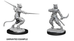 Nolzurs Marvelous Miniatures Male Tabaxi