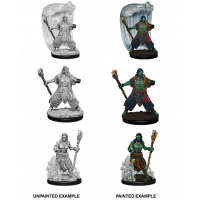 Nolzur's Marvelous Unpainted Miniatures - Water Genasi Male Druid