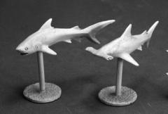 Sharks (2) 03622