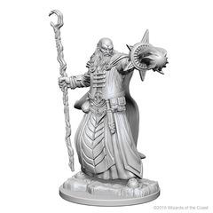Nolzur's Marvelous Miniatures - Human Wizard (Male)