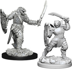 Nolzur's Marvelous Unpainted Miniatures - Dragonborn Female Paladin