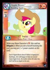 Apple Bloom Budding Apple 14 C