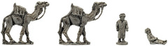 XSO101: Camels and Handlers