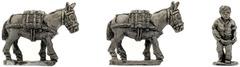 XSO102: Mule Team
