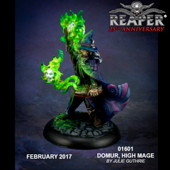 01601 Silver Anniversary - Domur, High Mage