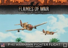 UBX52: P-40 Warhawk Fighter Flight (2 aircraft)