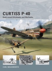 Air Vanguard: Curtiss P-40