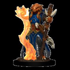 D&D Premium Male Dragonborn Sorcerer