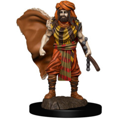 D&D Premium Male Human Druid
