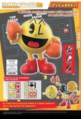 ENTRY GRADE PACMODEL (PacMan)