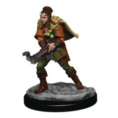 D&D Premium Female Human Ranger