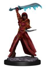 D&D Premium Female Human Rogue