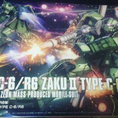 HG 1/144 - MS-06C-6/ R6 Zaku II Type C-6/R6
