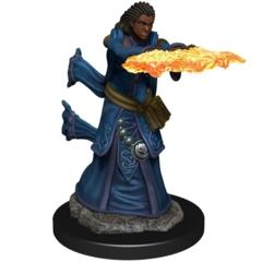 D&D Premium Female Human Wizard