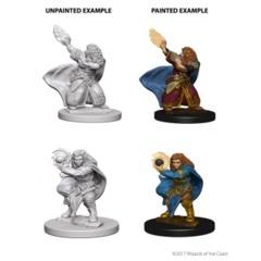 Nolzur's Marvelous Miniatures - Dwarf Wizard (Female)