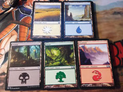 Assorted Basic Lands Bundle
