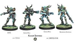 (280935) Kaauri Sentinels