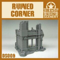 DS009   RUINED  CORNER