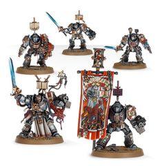 (57-09) Grey Knights Paladin Squad /Terminator Squad