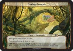 Feeding Grounds