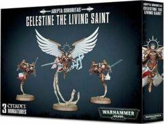 (52-58) Saint Celestine