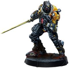 (281311) Húláng Shocktroopers (Combi Rifle + Light FT)