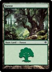 20 Basic Forest