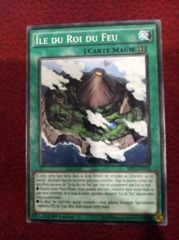 Fire King Island - FRENCH - SHVI-FR092 - Common - 1st Edition