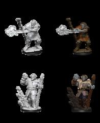 D&D Nolzur's Marvelous Miniatures: Firbolg Druid