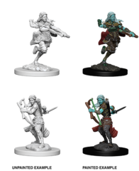 D&D Nolzur's Marvelous Miniatures: Air Genasi Rogue