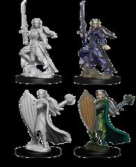 D&D Nolzur's Marvelous Miniatures: Elf Paladin