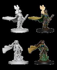 D&D Nolzur's Marvelous Miniatures: Elf Druid