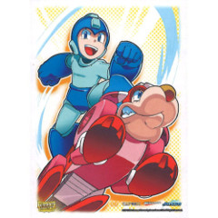 Dragon Shield Mega Man & Rush Sleeves
