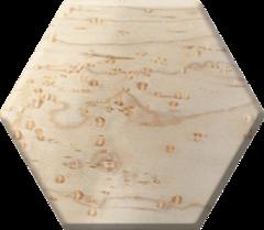 Elderwood Academy Hex Chest - Birdseye Maple