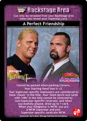 A Perfect Friendship