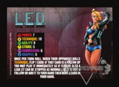 L.E.D. Competitor Card