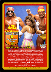 The Mega Powers Superstar Set