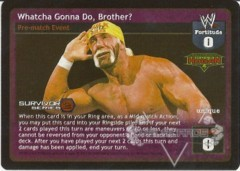 Whatcha Gonna Do, Brother? - SS2