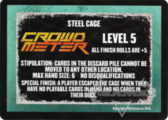 Steel Cage Level 5