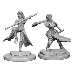 Dungeons And Dragons: Nolzur's Marvelous Unpainted Miniatures - Human Monk (Female)